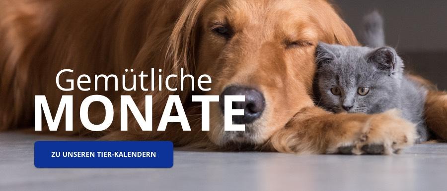 Tier-Kalender bei starkalender.de
